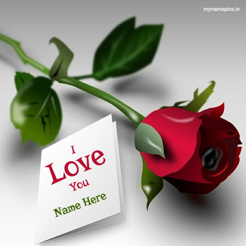 Write lover name on I love you rose profile pics